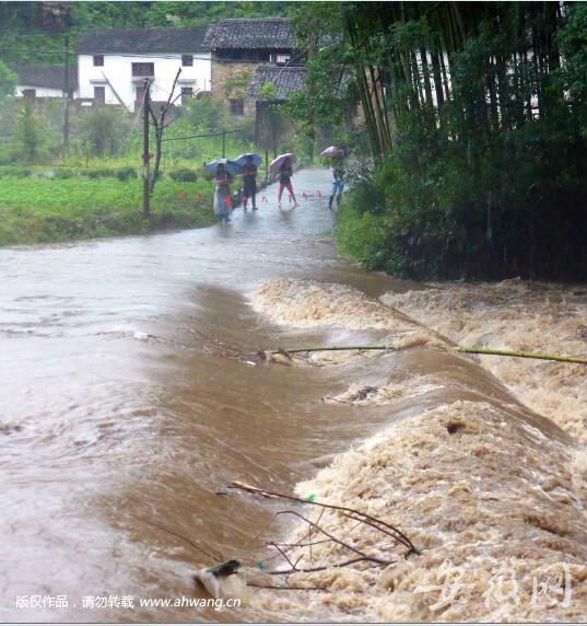 (视频)休宁又有人掉下漫水桥 村民冷水中合力救人