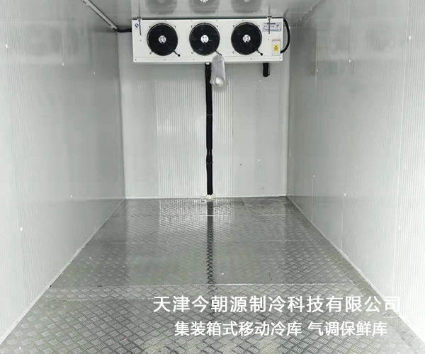 大理集装箱式移动冷库技术