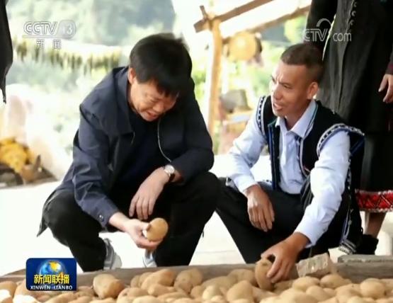 """""""农民院士""""朱有勇:用科技改变贫穷"""