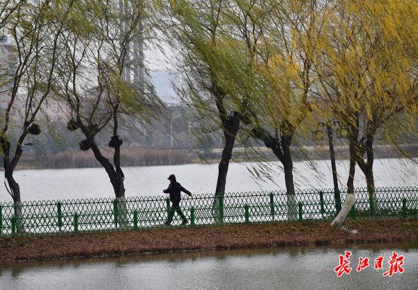 元旦开始,武汉将由晴冷模式切换到湿冷模式